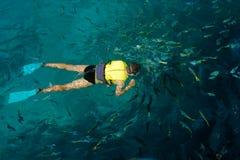 ferier som snorkleling Arkivfoton