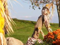 feriescarecrow Royaltyfri Fotografi