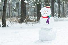 Ferievinter tre kastar snöboll snögubben med hatten och halsduken Fotografering för Bildbyråer