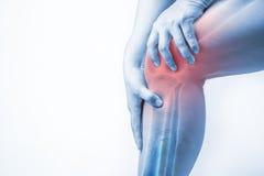 Ferita al ginocchio in esseri umani dolore del ginocchio, la gente medica, mono punto culminante di dolori articolari di tono al  immagine stock libera da diritti