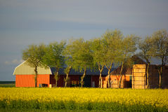 Ferme Images stock