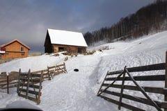 Ferme avec des moutons pendant l'hiver photographie stock libre de droits