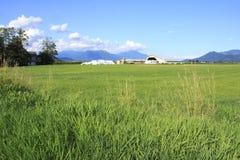 Ferme canadienne de vallée Photographie stock