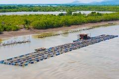 Ferme d'élevage de poissons au Vietnam du sud Images libres de droits