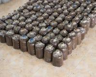Ferme de champignon Image libre de droits