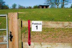 Ferme de cheval Photographie stock libre de droits