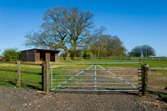 Ferme de cheval photo stock