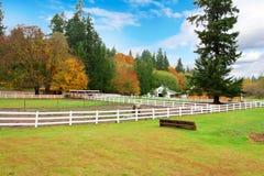 Ferme de cheval avec la barrière blanche et les feuilles colorées de chute. Image libre de droits