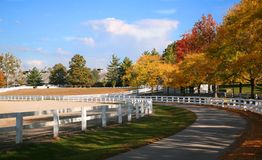 Ferme de cheval du Kentucky Photographie stock