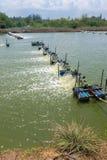 Ferme de crevette, Thaïlande Images libres de droits