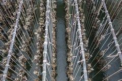 Ferme de moule Golfe de fermes d'huître Ferme d'huître dans la province orientale de la Thaïlande photographie stock