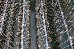 Ferme de moule Golfe de fermes d'huître Ferme d'huître dans la province orientale de la Thaïlande photo stock