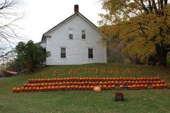Ferme de potiron du Vermont image stock