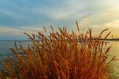Ferme de réservoir ci-dessus de coucher du soleil Images libres de droits