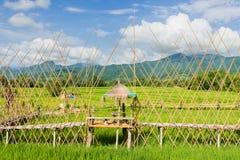 Ferme de riz avec le farmer& x27 ; hutte de s Image stock