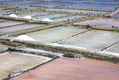 Ferme de sel à Aveiro. Photos libres de droits