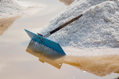 Ferme de sel Photo stock