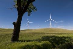 Ferme de vent de Palouse Photo stock
