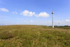 Ferme de vent de Penrhyddlan et de LLidiartywaun photographie stock libre de droits