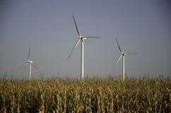 Ferme de vent et zone de maïs Photos libres de droits