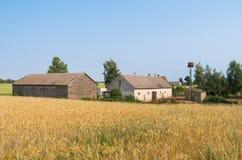 Ferme et champs de blé polonais Image libre de droits