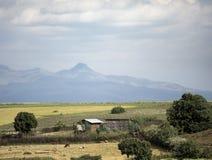 Ferme et ferme dans les montagnes de l'Ethiopie Photo libre de droits