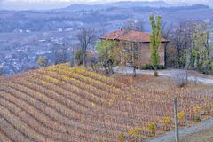 Ferme et vignobles de Langhe Image de couleur Photo stock