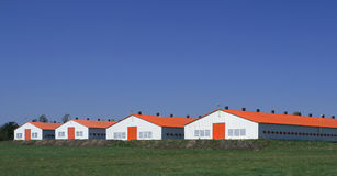 Ferme moderne Photo stock