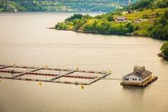 Ferme norvégienne d'élevage de poissons sur l'eau Photographie stock libre de droits