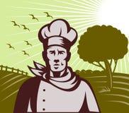 Ferme organique de chef ou de cuisinier de Baker Photos libres de droits