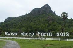 Ferme suisse 2012 de moutons Photographie stock libre de droits
