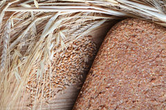 Ferment bread. On home ear of wheat grain wheat Royalty Free Stock Photography