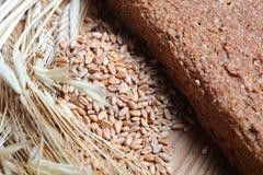 Ferment bread Royalty Free Stock Photos