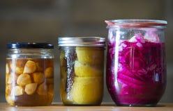 fermentación Imagen de archivo