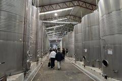 Fermentación en las cubas del acero inoxidable para el vino en el lagar Santa Rita imágenes de archivo libres de regalías