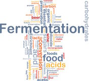 Fermentation process background concept Royalty Free Stock Image