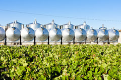 Fermentation tanks Royalty Free Stock Photography