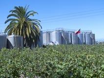 Fermentation tanks Royalty Free Stock Photo