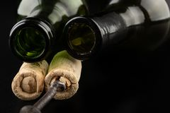 Fermentation tube and corkscrew on a black table. Accessories needed to prepare homemade wine. Dark background bottle glass alcohol alcoholic bar cabernet card royalty free stock photography