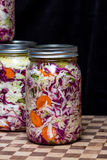 Fermented or cultured vegetables royalty free stock photography