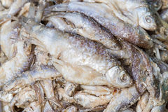 Fermented fish Stock Images