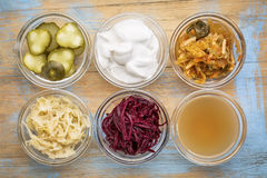 Fermented food collection Royalty Free Stock Photography