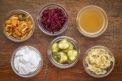 Fermented food sampler Stock Images