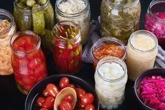 Fermented ha conservato l'alimento immagine stock