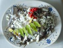 Fermented herring Royalty Free Stock Photo