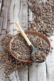 Fermented malt Stock Images
