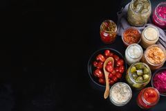 Fermented preservou o alimento imagem de stock royalty free
