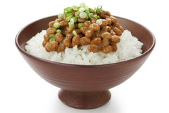 Fermented soy beans on rice , japanese food Royalty Free Stock Photo