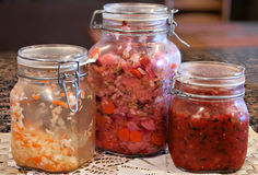 Fermented vegetables Stock Images