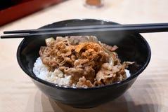 Fermentez le boeuf de tranche avec du riz dans le style japonais photos libres de droits